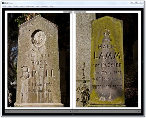Latin Typefaces for the Jewish Cemetery in Brno